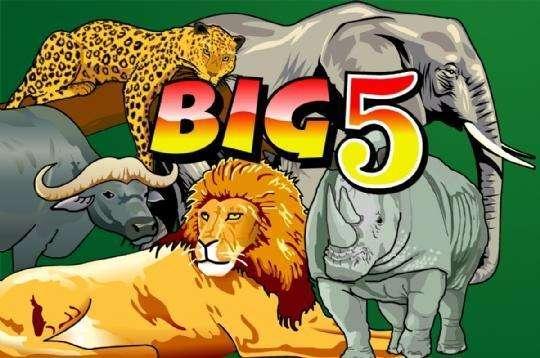 Big 5 Slot Machine