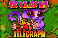 Bush Telegraph Slot Machine