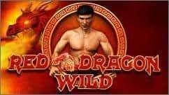 Red Dragon Wild Slot Machine