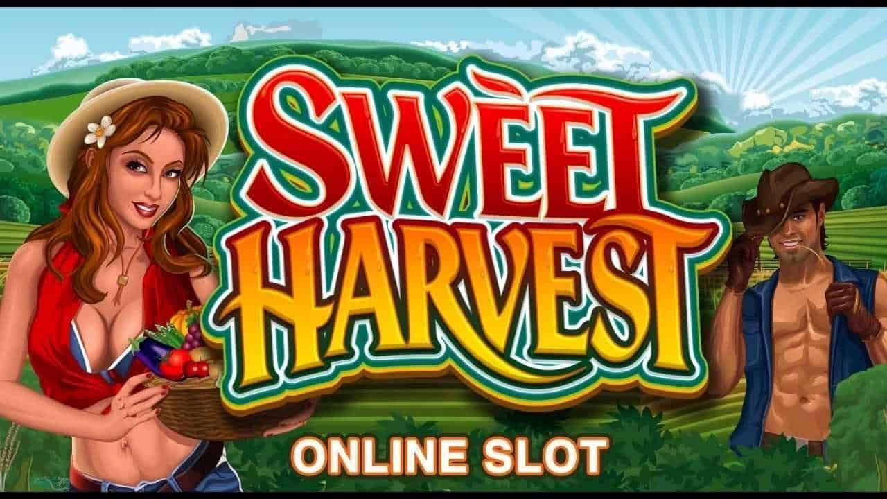 Sweet Harvest Slot Machine