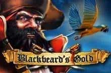 Blackbeard?s Gold Slot Machine