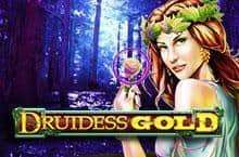 Druidess Gold Slot Machine