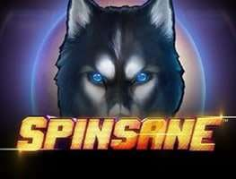 Spinsane Slot Machine